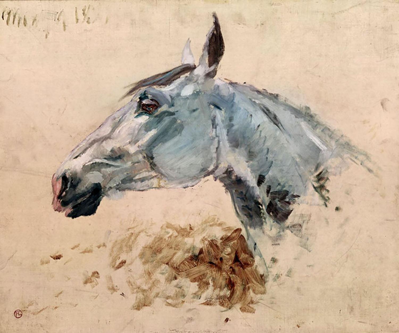 Horse Study by Henri de Toulouse-Lautrec